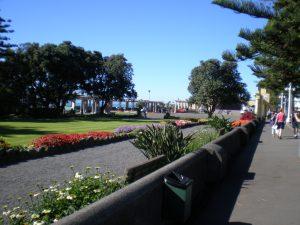 Napier our second Port